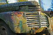 Rusted Cars Posters - Moss Covered Grill Poster by Randy Harris