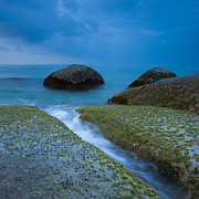 Binh Prints - Moss Covered Rocks At Seashore Print by AndreLuu