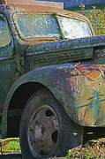 Rusted Cars Posters - Moss Covered Truck Poster by Randy Harris