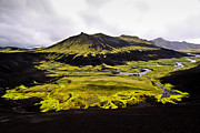 Cory Photography Prints - Moss in Iceland Print by Tom and Pat Cory