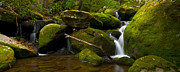 Smokey Mountains Prints - Mossy Falls III Print by Ryan Heffron