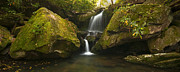Smokey Mountains Framed Prints - Mossy Falls Framed Print by Ryan Heffron