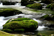Riffle Prints - Mossy River Rocks Print by Gary L Suddath