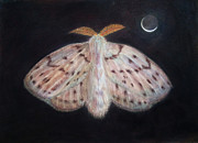 Ev Cabrera Marinucci - Moth and Crescent Moon...