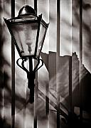 Shadow Metal Prints - Moth and Lamp Metal Print by David Bowman