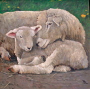 Mother Framed Prints - Mother And Lamb Framed Print by John  Reynolds