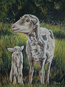 Sheep Pastels Framed Prints - Mother and Son Framed Print by Dianne  Ilka