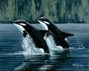 Orca Paintings - Mother and Son Orcas by Bob Patterson