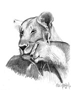 Love The Animal Drawings Prints - Mother and The Lion Baby Print by Eduardo Crowder