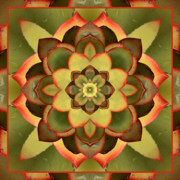Spiritual. Geometric Prints - Mother Lotus Print by Bell And Todd