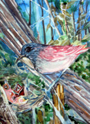Nest Drawings - Mothers Day by Mindy Newman