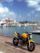 Motorized Framed Prints - Motorbike at the marina Framed Print by Gaspar Avila
