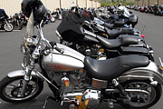 Harley Davidson Photos - Motorcycle Row 7d15091 by Wingsdomain Art and Photography