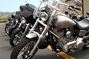 Harley Davidson Photos - Motorcycle Row 7d15092 by Wingsdomain Art and Photography