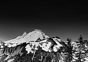 Mountains Photo Framed Prints - Mount Baker in Washington Framed Print by Brendan Reals