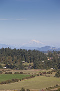 Baker Island Photos - Mount Baker Looms Over Farms On A Sunny by Taylor S. Kennedy