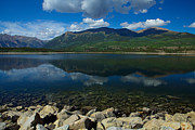 Mt Elbert Framed Prints - Mount Elbert Framed Print by Tim Reaves