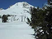 Glenna McRae - Mount Hood Oregon Ski Trail