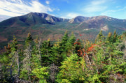 Mount Katahdin Posters - Mount Katadhin from South Turner Mountain Poster by John Burk