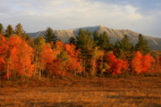 Mount Katahdin Prints - Mount Katahdin Autumn Morning Print by John Burk