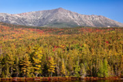 Wild And Scenic Prints - Mount Katahdin in Gold Print by Susan Cole Kelly