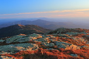 Alpine Zone Posters - Mount Mansfield Alpine Zone Poster by John Burk