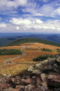White Mountains Posters - Mount Moosilauke Summit Poster by John Burk
