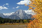 Mount Moran In Autumn Print by Larry Ricker