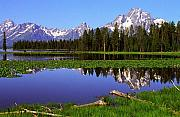 Moran Originals - Mount Moran Tetons Natl Park by Alan Lenk