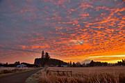 Mount Rainier Dawn Print by Sean Griffin