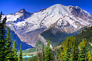 Snow Prints - Mount Rainier III Print by David Patterson
