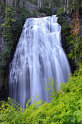Green Power Prints - Mount Rainier Narada Falls Print by Pierre Leclerc