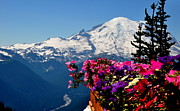Crystall Posters - Mount Rainier Seen from Crystal Mountain Summit  3 Poster by Tanya  Searcy