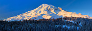 Snowshoe Posters - Mount Rainier Winter Evening Poster by Inge Johnsson