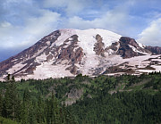 Snow-covered Landscape Prints - Mount Rainier With Coniferous Forest Print by Tim Fitzharris