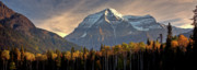 Clear Fall Day Posters - Mount Robson Poster by Mark Duffy