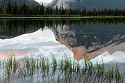 Rundle Posters - Mount Rundle Reflection Poster by Bob Christopher