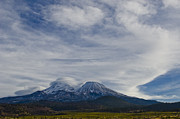 Mount Shasta Photos - Mount Shasta Weather by Loree Johnson