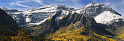 Aspen Fall Colors Photos - Mount Timpanogos by Utah Images