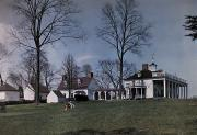 Pecan Posters - Mount Vernon Sits On A Hill Overlooking Poster by Clifton R. Adams
