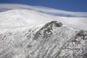 Alpine Zone Photos - Mount Washington NH - Tuckerman Ravine by Erin Paul Donovan