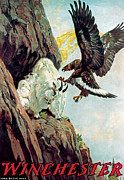 Mountain Goat And Eagle Print by Lynn Bogue Hunt