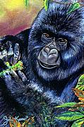 Gorilla Drawings - Mountain Gorilla by John Keaton