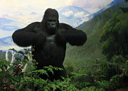 Primates Posters - Mountain Gorilla Poster by RicardMN Photography
