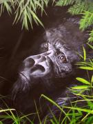 Primates Originals - Mountain Gorilla by Sue Homer