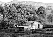 Homestead Photo Posters - Mountain Homestead - Virginia Poster by Brendan Reals