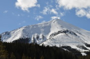 Evergreen Covered In Snow Framed Prints - Mountain in May Framed Print by Diana Nigon