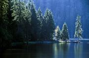Peaceful Scenery Photo Prints - Mountain Lake In Arbersee, Germany Print by John Doornkamp