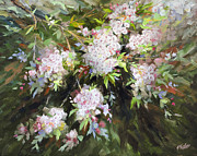 White Flowering Bush Paintings - Mountain Laurel Impressions by Katherine Tucker