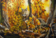 David Paul - Mountain Lion in Fall...